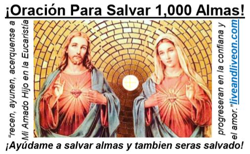 New Act of Love Prayer Card Spanish