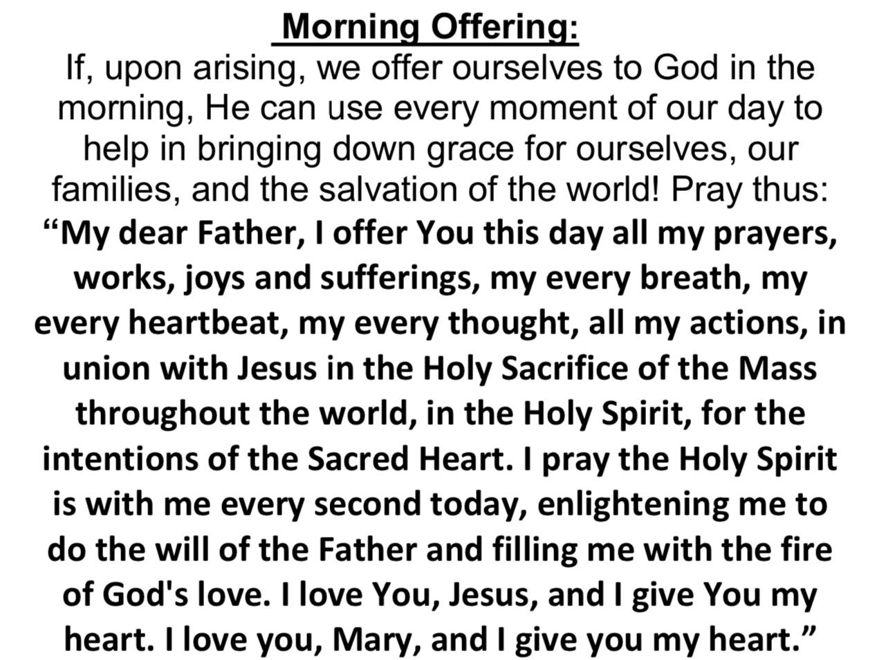 Morning Offering.jpg