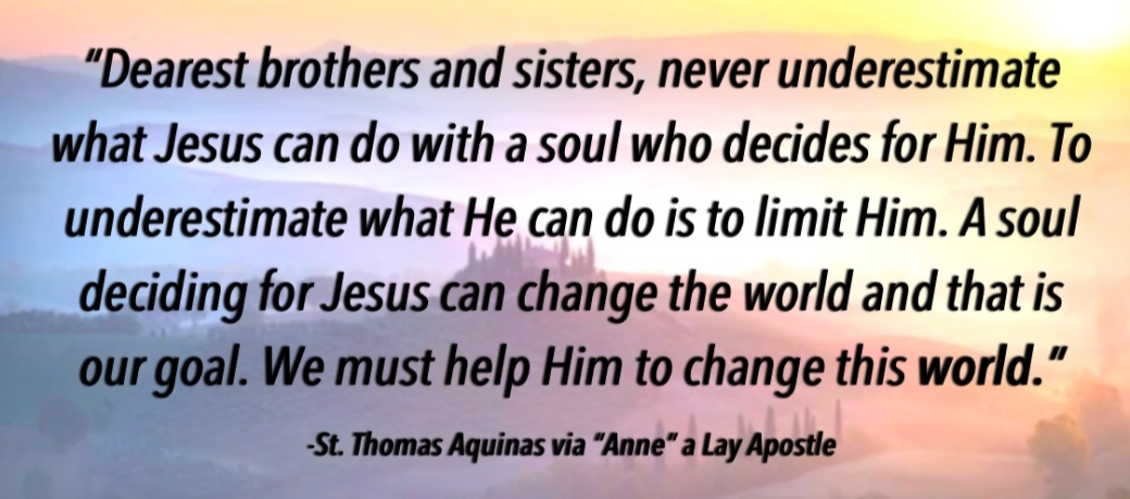 St Thomas Aquinas Quote